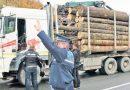 Peste 1200 de metri cubi de material lemnos, în valoare de 200.000 de lei, confiscați de polițiștii suceveni de la începutul anului