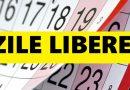 Până la data de 15 ianuarie a fiecărui an, Guvernul va stabili zilele de muncă pentru care se acordă zile libere, care preced şi care succed sărbătorile legale, respectiv zilele în care se recuperează acestea. Modificare a Codului Muncii