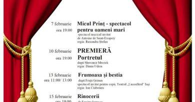 """Teatrul Municipal """"Matei Vișniec"""", programul spectacolelor din luna februarie. Premieră  """"Portretul"""", după Slawomir Mrozek, în regia Dianei Udrea"""