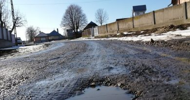 """""""Găurile te salută frumos"""", pe drumurile din Suceava. Comunicat Dan Acibotăriţă, președintele filialei Suceava a Partidului Verde"""