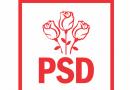 """Lansarea candidaților PSD pentru Consiliul Județean Suceava va avea loc mâine, 14 august: """"Venim în fața electoratului cu adevărați profesioniști, persoane care și-au demonstrat valoarea de-a lungul timpului"""""""