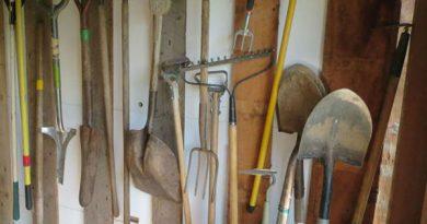 Un sucevean amator de horticultură a furat unelte pentru grădinărit de la LIDL Șcheia
