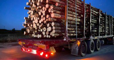 Vânătoarea transportatorilor de lemn continuă pe drumurile județului. Alte reclamații neconfirmate venite de la activiștii de mediu