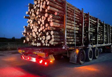 Transporturi de lemn semnalate de activiști de mediu, bănuite ca ilegale, oprite, verificate, confirmate ca fiind în regulă de autorități. Opinie separată a activistului de mediu Tiberiu Boșutar