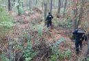 """Bărbat cu identitate necunoscută găsit mort în pădure la Marginea. Un mărginean care se plimba cu motocicleta prin pădure a făcut macabra descoperire, în zona denumită """"Șoarec"""""""